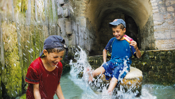 Summer in the City of David